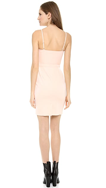 Alexander Wang Mesh Panel Bustier Dress