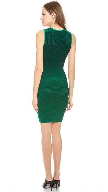 Alexander Wang Optical Stripe Tee Dress