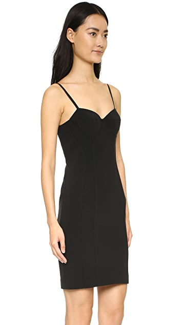 Alexander Wang Bustier Dress