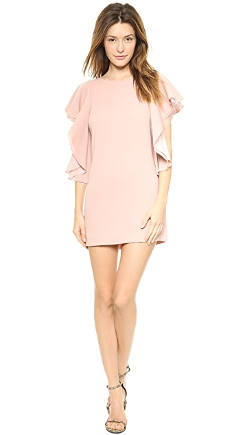 BCBGMAXAZRIA Solace Ruffle Sleeve Dress