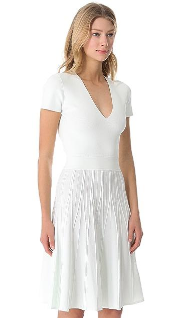 Calvin Klein Collection Hilan Dress