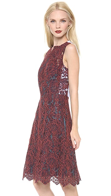 Carven Sleeveless Lace Dress