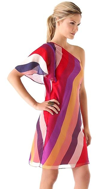 Catherine Malandrino One Shoulder Striped Dress