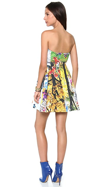Clover Canyon Ski Garden Strapless Dress