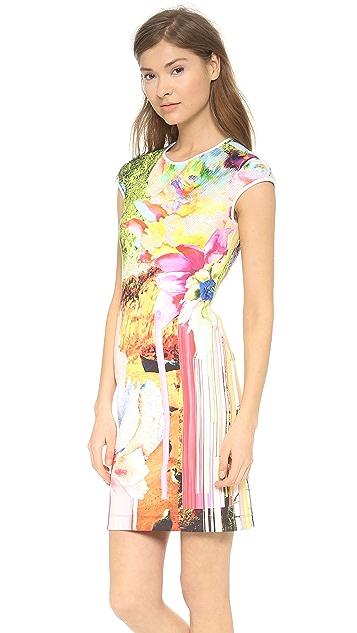 Clover Canyon Griffith Park Cap Sleeve Dress