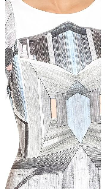Clover Canyon Interior Perspective Dress