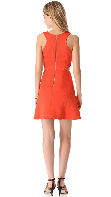 Club Monaco Tika Dress