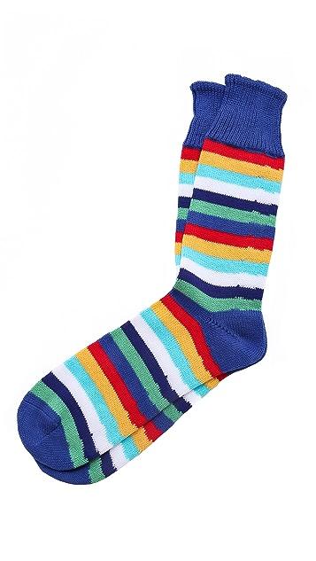Corgi William Stripe Socks