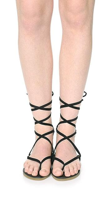 Charlotte Stone Ogden Gladiator Sandals