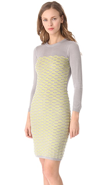 Cut25 by Yigal Azrouel Fish Scale Knit Dress