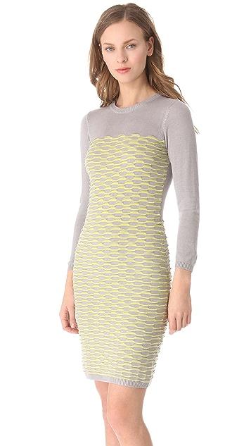 Cut25 by Yigal Azrouel Fish Scale Knit Dress