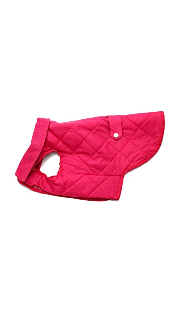 C. Wonder Quilted Dog Jacket