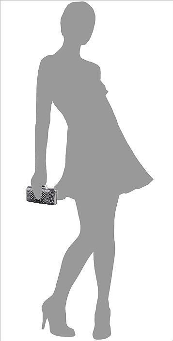 Diane von Furstenberg Tonda Python Clutch