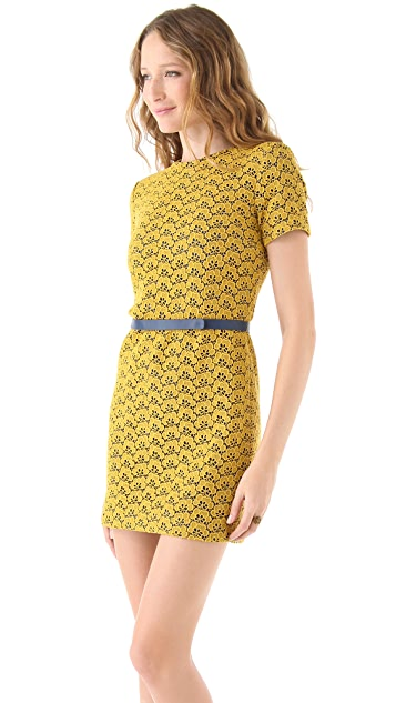 Diane von Furstenberg Cindy Acorn Lace Dress