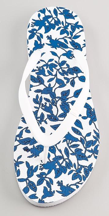 Diane von Furstenberg Tairona Leaf Flip Flops