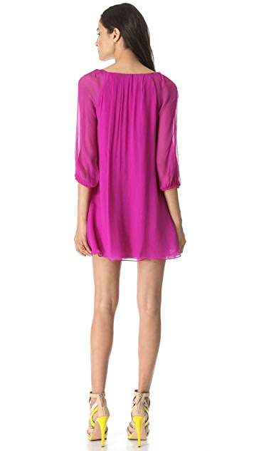 Diane von Furstenberg Fenobe Dress