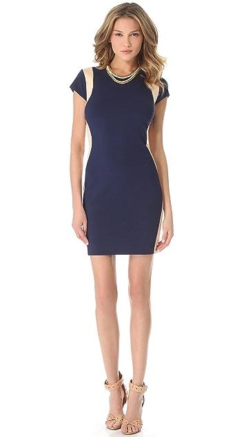 Diane von Furstenberg Pele Shift Dress