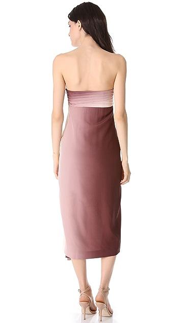 Diane von Furstenberg Sierra Strapless Dress