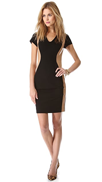 Diane von Furstenberg Dayton Dress with Leather Trim