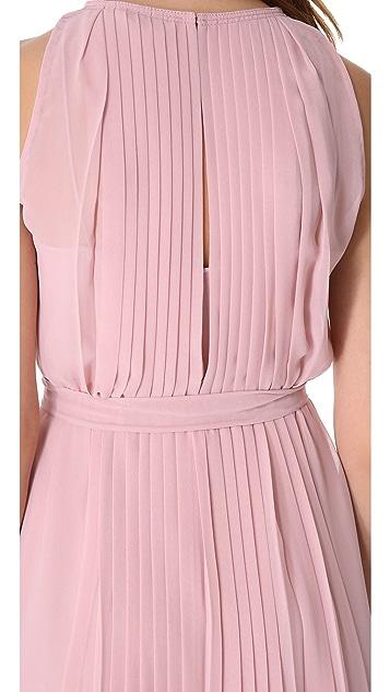 Diane von Furstenberg Ria Chiffon Dress