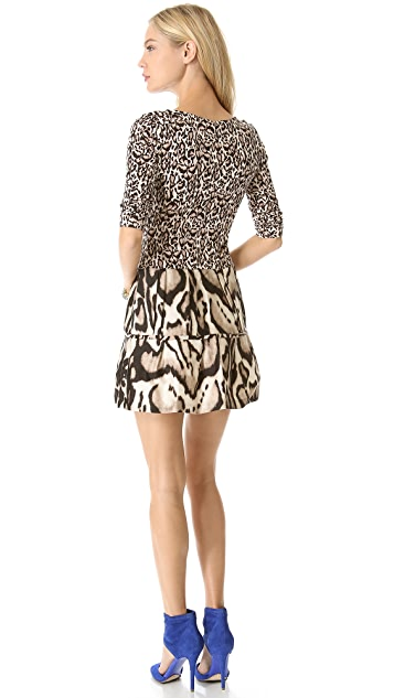 Diane von Furstenberg Kay Printed Dress