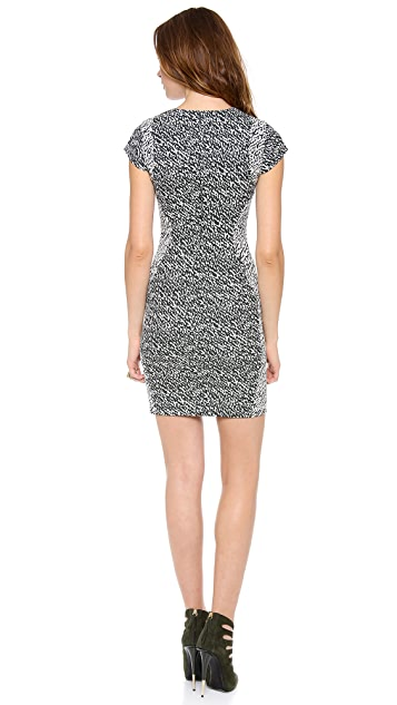 Diane von Furstenberg Pele Dress