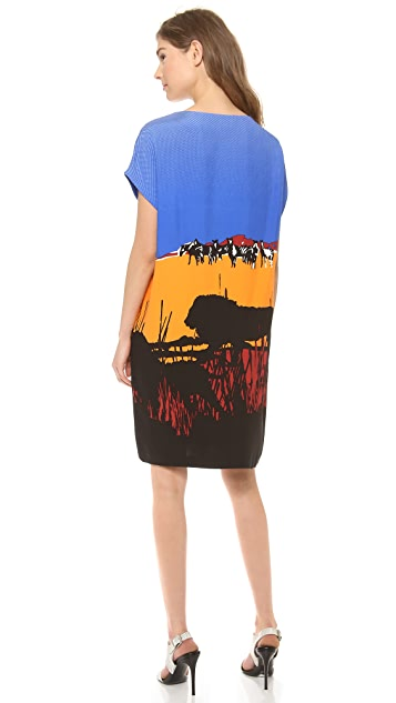 Diane von Furstenberg Harriet Print Dress
