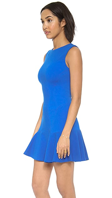 Diane von Furstenberg Jaelyn Drop Waist Dress
