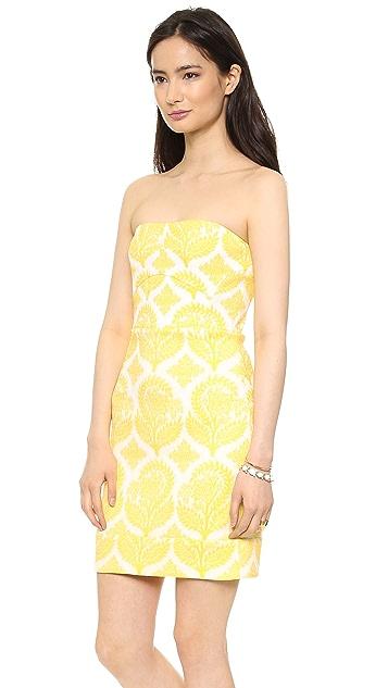 Diane von Furstenberg Garland Strapless Dress