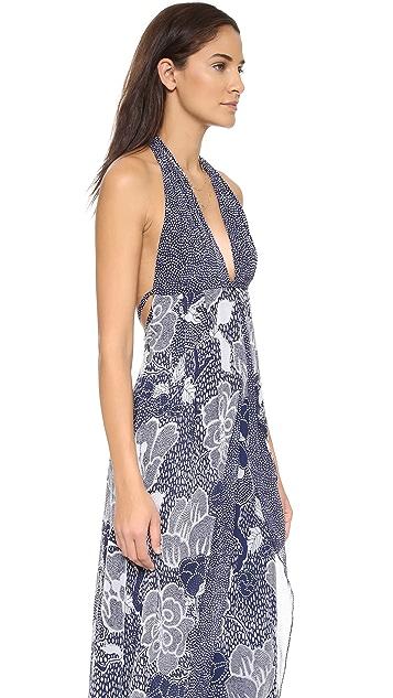 Diane von Furstenberg Fantasia Maxi Dress
