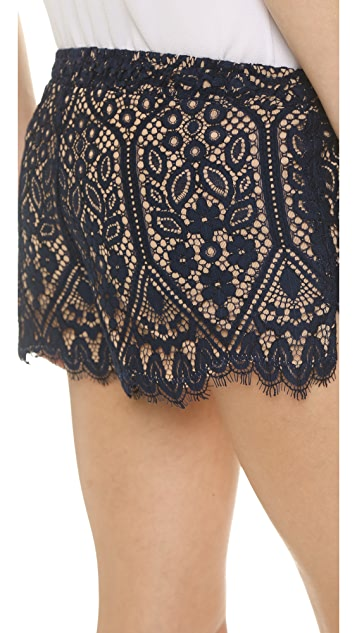 David Lerner Lace Shorts