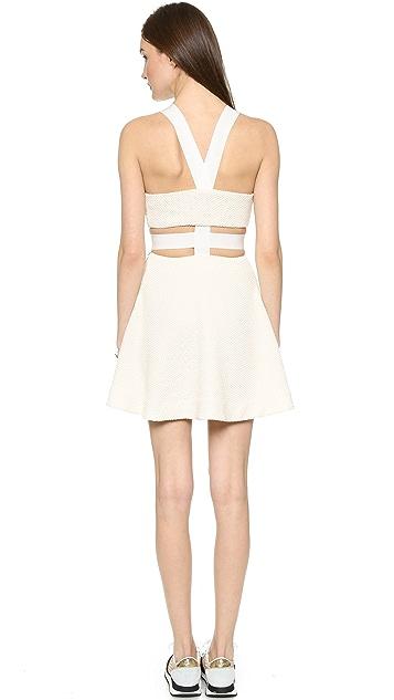 Elizabeth and James Kayne Cutout Dress