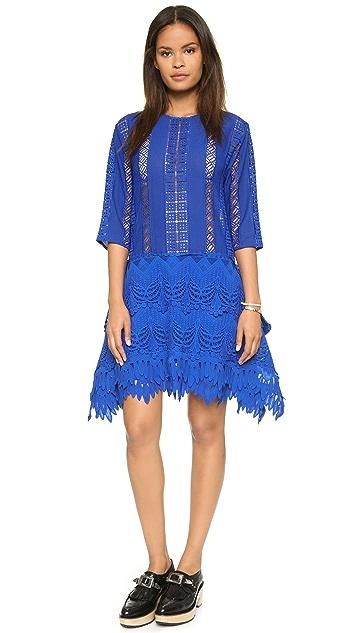 endless rose Lace Combo Dress