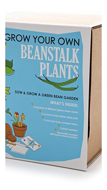 Gift Boutique Sow & Grow Beanstalk Plants