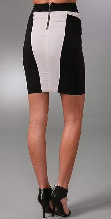 Helmut Lang Colorblock Skirt