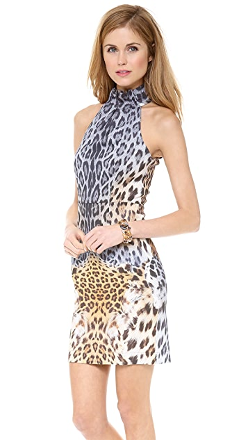 Just Cavalli Leo Degrade Print Collar Dress