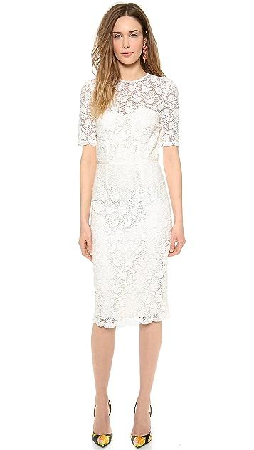 Jill Jill Stuart Short Sleeve Lace Dress