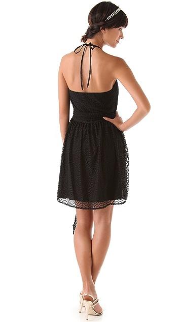Joanna August Short Lace Dress