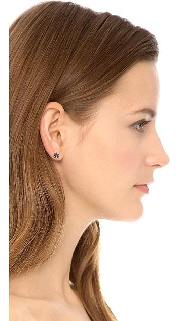 Katie Rowland Java Mini Stud Earrings