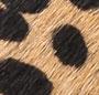 Cheetah/Black