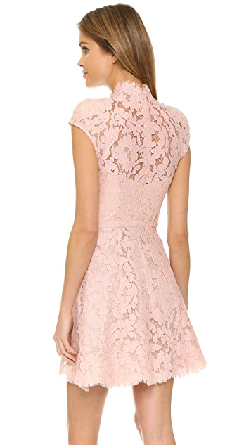 Lover Warrior Lace Mini Dress