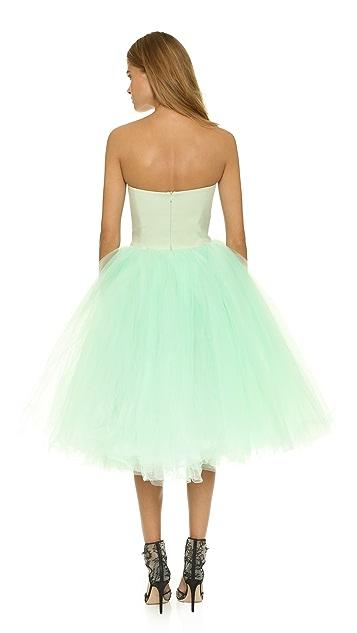 Loyd/Ford Strapless Ballerina Dress