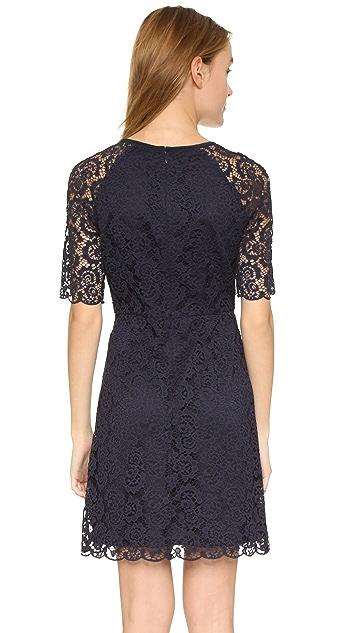 Madewell Short Sleeve Waisted Lace Dress