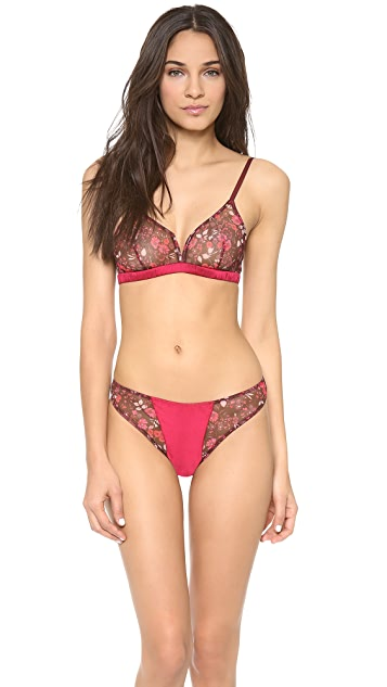 Morgan Lane Wonderland Ava Bra