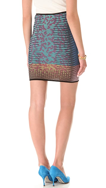 M Missoni Space Dye Animal Print Skirt