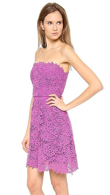 Monique Lhuillier Lace A Line Dress