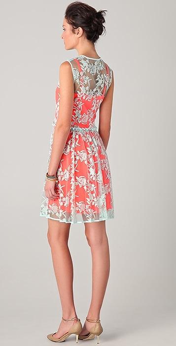 Nanette Lepore Varsity Lace Dress