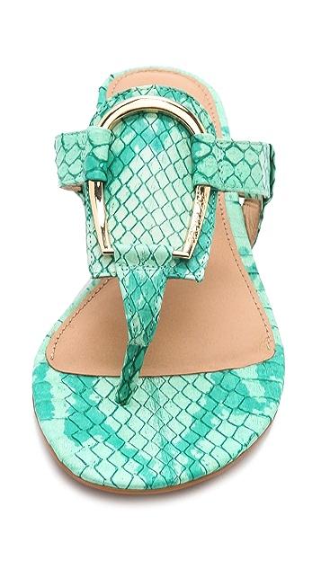 Rachel Zoe Graden Thong Sandals