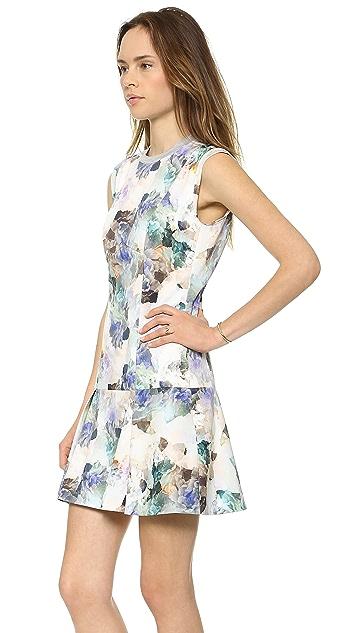 Rebecca Taylor Enchanted Drop Waist Dress