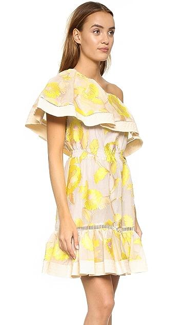 Rebecca Taylor Ella One Shoulder Ruffle Dress